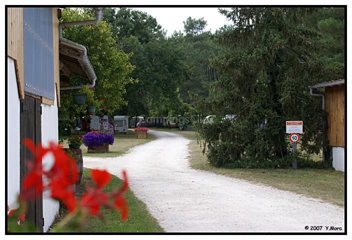 Camping De Bilos