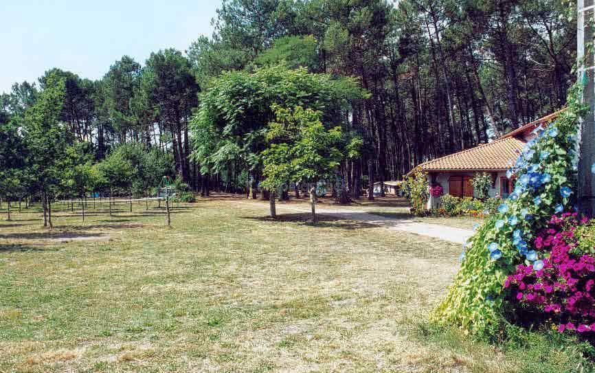 Camping La Téouleyre