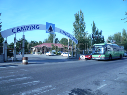 Camping Alpha