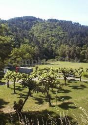 Camping Municipal du Collet-de-dèze