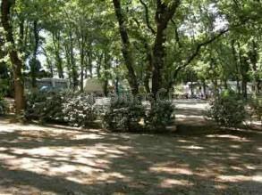 Le Bois Des Ecureuils