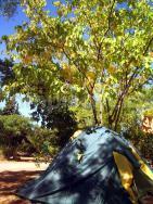 Camping Les Tamaris